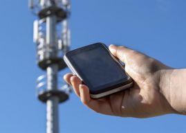 Free Mobile : un taux de connexion qui dépasse les 81%