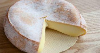 Forte augmentation de l'épidémie de salmonellose liée au fromage au lait cru