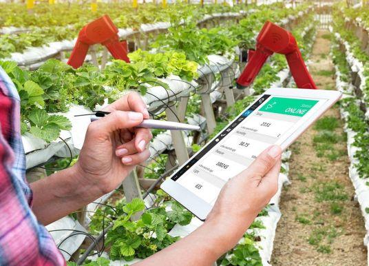Emmanuel Macron appelle l'Europe à utiliser la blockchain pour innover dans le secteur agricole