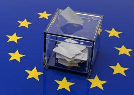 Une victoire de Marine Le Pen aux élections européennes nuirait à l'euro