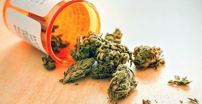 Les députés français valident un budget pour des expérimentations sur le cannabis thérapeutique