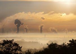 Cinq pistes pour concilier reprise économique et transition écologique